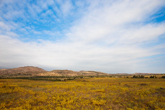 Autumn on the prairie (yosmama151) Tags: 2016 autumn fall october wichitamountainswildliferefuge landscape field prairie sky clouds blue vast