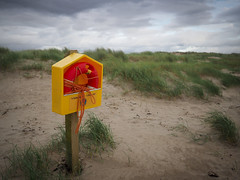 (Sonya Gencheva) Tags: outdoor beach inchbeach ireland kerry nature landscape dunes greengrass sunset lifebelt