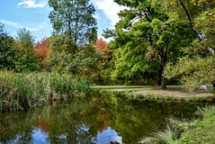 Autumn lake in the park DSC_0771 (Me now0) Tags: autumn lake park afternoon sunny europe trees nikond5300 basiclens 1855mmf3556  5300