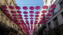 Parapluie rose (srouve78) Tags: parapluie rose montpellier rue de la loge