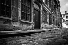Street of Brussels, Belgium (pas le matin) Tags: blackandwhite bw noiretblanc nb monochrome city capital ville cityscape cobblestone pavement travel world voyage brussels bruxelles belgie belgium belgique street rue door facades windows canon 5d 5dmkiii canon5dmkiii canoneos5dmkiii