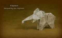 Elephant by Gen Hagiwara (Thomas Krapf Origami) Tags: origami elephant elefant paper paperfolding papier papierfalten mamals sugetiere gen hagiwara genhagiwara spiritsoforigami wildlife