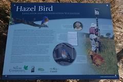 DSG_7374 Hazel Bird  bio (Greying_Geezer) Tags: 2016 hazelbird ncc hamiltontownship signage infopanel ort e2e trails hiking naturereserves
