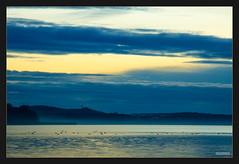 Mggelsee (MLursus) Tags: mlursus 2016 canon eos 50d berlin mggelsee germany cloudy cloud wolkig wolken wasser sonnuntergang dusk mggelturm blau blue yellow gelb