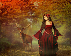 Autumn Queen (charissa1066) Tags: autumn fall queen elk