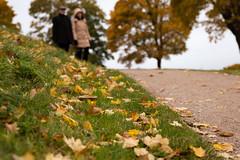 Autumn Blues - Autumn Rejoice (Niels A) Tags: import20161026 fall kastellet