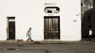 Early morning Havana