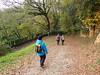 Via Francigena - tratto San Gimignano Colle di Val d'Elsa 13.11.2016 (Katnis2016) Tags: francigena viafrancigena sangimignano colledivaldelsa monteriggioni toscana italy