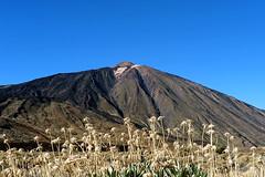 Teide_0480 (kurbeltreter20) Tags: spain spanien tenerife teneriffa teide vulkan volcano mountain color sky blue