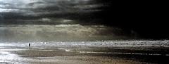 03-01 ES novo bw wolk angler brandung ag12-013 (u ki11 ulrich kracke) Tags: bw angler brandung dynamik es horizont minimal novostpetri strand wolke
