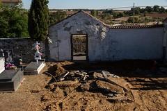 Prospección en Alcañices (Zamora) (10)