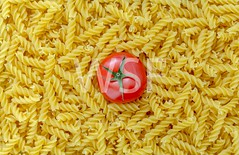 Tomato with fusilli pasta as background (wsf-fl) Tags: red food macro tomato many background pasta fresh eat ingredients noodles fullframe culinary variation combination uncooked fusilli heirloomtomato fillingpicture