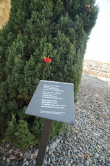 DSC02085 (jtstewart) Tags: old graveyard spain civilwar ebro tarragona massgrave 2015