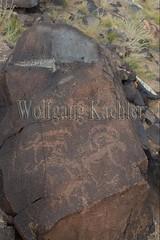 30095303 (wolfgangkaehler) Tags: old animal animals rock asian ancient asia desert mongolia centralasia petroglyph gobi blackmountains petroglyphs ibex mongolian gobidesert southernmongolia