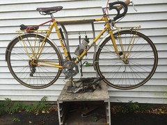 Jack Taylor on the workstand (ddsiple) Tags: cycling workstand jacktaylor
