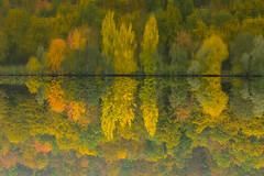 sotto sopra (Domenico Nigro) Tags: lago autunno colori lugano germania notturno olpe