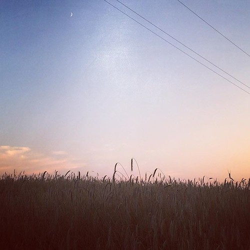 #sunset #austria #stang #fields #moon #sky