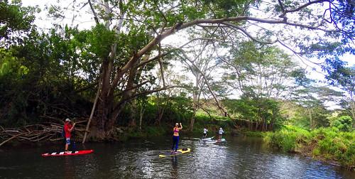 2015 Kauai Paddle Adventure  (11)
