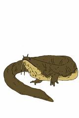 Barbel Maw (nathannethis) Tags: water monster giant pond mud maw amphibian salamander lizard fantasy swamp aquatic barbel creature bog wrinkles siren newt eft mudpuppy herpetology waterdog hellbender fantasyanimal salamandermonster amphibiancreature fantasysalamander