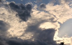 Cloudscape Background (Apollo51x) Tags: light sunset sky sun storm nature weather skyline clouds composition sunrise canon skyscape solar movement skies spectrum gamma atmosphere ciel nuage cloudscape specter nibiru skysolar jasminhudon skysolarphotography