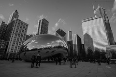 The Bean (2 of 3) (Vargasjose56) Tags: park people blackandwhite bw sculpture usa white chicago cold lines skyline out photography illinois downtown december skyscrapers unitedstates outdoor sony down bean millennium ama states alpha amateur phot 2015 ilce rokinon rokinon12mm ilce6000