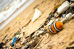 Finding Nemo (Premnath Thirumalaisamy) Tags: beach garbage nemo clean chennai findingnemo thiruvanmiyur thrownback respectnature tiruvanmiyur aftermathfloods