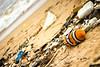 Finding Nemo (Premnath Thirumalaisamy) Tags: beach garbage nemo clean chennai findingnemo thiruvanmiyur thrownback respectnature tiruvanmiyur aftermathfloods