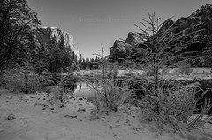 _SMB3385 (steve bond Photog) Tags: valleyview yosemitenationalpark california snowscape snowyosemite landscape depth blackandwhite elcapitan mercedriver stevebondphotography