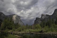 Contemplating the Valley (dcnelson1898) Tags: yosemitenationalpark california sierranevadamountains nationalpark nationalparkservice nps mountains mercedriver granite glacier