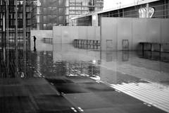On the diagonal (pascalcolin1) Tags: paris13 bnf pluie rain reflection parapluie umbrella reflets femme woman photoderue streetview urbanarte noiretblanc blackandwhite photopascalcolin