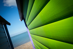Beach Wood (DobingDesign) Tags: beachhuts whitstable beach sea seafront seaside pebbles shingle bluesky lines wooden panelling horizon lime green saturated bright kent hut shelter waterside abstract texture depthoffield wood woodpanelling angle