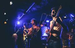 the fasulia (ddaann57) Tags: rock tlv tel aviv uzen bar concert live bass song music night lights dark canon 6d 2470 lightroom