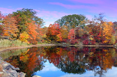 Colors of Autumn (Joseph W Ling) Tags: foliage color colorful fall autumn lake water reflect reflection cloud harrimanstatepark welch landscape scenery peaceful tranquility