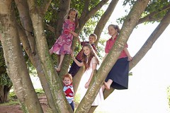 "kids-in-tree-451x300 • <a style=""font-size:0.8em;"" href=""http://www.flickr.com/photos/146714743@N06/30386934384/"" target=""_blank"">View on Flickr</a>"