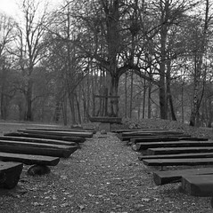 altar (rotabaga) Tags: sverige sweden svartvitt göteborg gothenburg blackandwhite bw bwfp film mediumformat mellanformat 120 6x6 tmax400 r09 lomo lomography lubitel166 twinlens analog slottsskogen