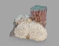 Elbaite with Cleavelandite (Ron Wolf) Tags: albite cleavelandite earthscience elbaite geology tourmaline crystal cyclosilicate feldspar hexagonal mineral mineralogy nature tectosilicate triclinic sandiegocounty california