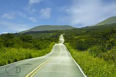 Hawaii 2016 (cade.rina) Tags: hawaii piilani highway maui street road hana