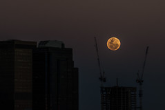 Supermoon (Richard Mart1n) Tags: supermoon moon astrophotography travel perth awesome buildings city westernaustralia australia nikon d5000