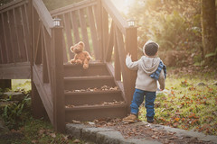stay there ted, I'll check this out (Windermere Images) Tags: boy teddy sunny autumn love bridge fun playtime november leaves wales childhood imagination troll