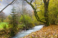 20161026-IMG_5015.jpg (diegofaria) Tags: trummelbach bern confoederatiohelvetica waterfalls alps schweiz switzerland berneseoberland lauterbrunnen suisse fall autumn ch