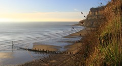Coast at Shanklin - Isle of Wight 021116 (13) (Richard Collier - Wildlife and Travel Photography) Tags: seascape isleofwight shanklin coastalcliffs coastal southcoast water sea coastallandscape