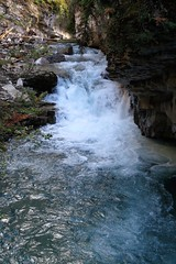 In the Lower Canyon (Patricia Henschen) Tags: banff nationalpark alberta canada banffnationalpark parkscanada parcs parks trail johnstoncanyon johnstoncreek waterfalls waterfall hike canyon creek canadianrockies