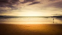 Surf days (Luis Marina) Tags: santander cantabria espaa es surf surfing wave water shore beach sunrise orilla playa landscape panoramic balcklight contraluz olas lg g5 sky clouds sun light sand arena luz peace calm relax low paz calma hombre surfista surfer ocean sea