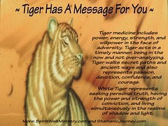 Tiger Has A Message For You (OC Always) Tags: tiger white gold desert sky moon graphics text spirit animal guide spiritual