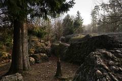 Goldau - Rockslide 1806 (Kecko) Tags: 2016 kecko switzerland swiss schweiz suisse svizzera innerschweiz zentralschweiz schwyz arthgoldau goldau sz bergsturz felssturz landslide rockfall rockslide tierpark natur naturpark nature park europe swissphoto geotagged geo:lat=47051420 geo:lon=8555540