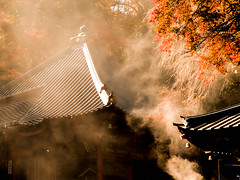 Incense smoke (chikuma_riv) Tags: japan nature landscape river lake mountain forest flower sunset sunrise spring summer autumn winter leaves