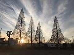 (backyard822) Tags: sky cloud sunset