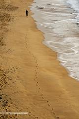 dasein (Nannile) Tags: ocean chile patagonia man beach nikon waves mood pacific silence timeline seafront presence carpediem vinadelmar dasein d700 anschauung