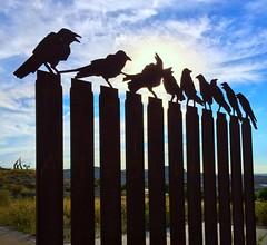 Siluetas de pájaros de Hitchcock en Valdespartera, Zaragoza. (eustoquio.molina) Tags: hitchcock valdespartera zaragoza pajaro bird silueta contraluz monumento