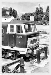 D7018 (R~P~M) Tags: uk greatbritain england train diesel unitedkingdom railway gloucestershire gloucester locomotive 35 glos hymek hortonroad